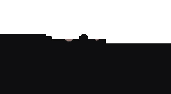 Twinzz logo